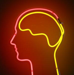 脳 β-エンドルフィン